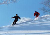 スキー 11007008437| 写真素材・ストックフォト・画像・イラスト素材|アマナイメージズ