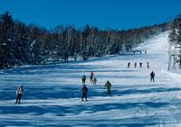 スキー 11007008591| 写真素材・ストックフォト・画像・イラスト素材|アマナイメージズ