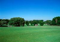ゴルフ場 11007013082| 写真素材・ストックフォト・画像・イラスト素材|アマナイメージズ