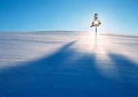雪原 11007014322| 写真素材・ストックフォト・画像・イラスト素材|アマナイメージズ