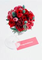 バラとカーネーション 11007023319| 写真素材・ストックフォト・画像・イラスト素材|アマナイメージズ