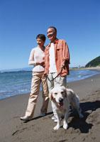 犬の散歩 11007025174| 写真素材・ストックフォト・画像・イラスト素材|アマナイメージズ