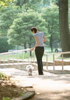 散歩 11007026946| 写真素材・ストックフォト・画像・イラスト素材|アマナイメージズ
