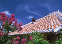 民家の屋根