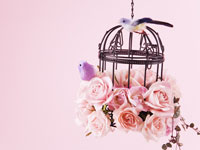 鳥かごとバラ 11007035516| 写真素材・ストックフォト・画像・イラスト素材|アマナイメージズ