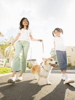 犬の散歩をする母親と娘