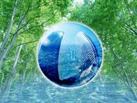 森林と市街地