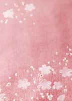 桜イメージ 11007058769| 写真素材・ストックフォト・画像・イラスト素材|アマナイメージズ