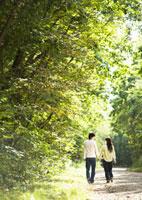 森林 11007059784| 写真素材・ストックフォト・画像・イラスト素材|アマナイメージズ
