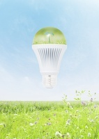 LED電球と草原