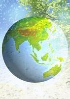 地球と木々のイメージ