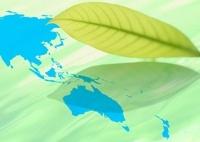 世界地図と葉