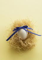 リボンを結んだ卵