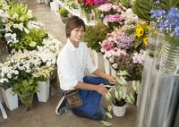 花屋の店員 11007064711| 写真素材・ストックフォト・画像・イラスト素材|アマナイメージズ