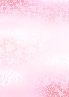 桜の海のイメージ