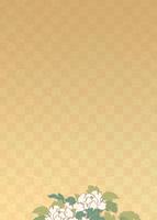 市松文様に牡丹のイメージ