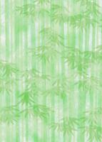 竹林 11007065784| 写真素材・ストックフォト・画像・イラスト素材|アマナイメージズ