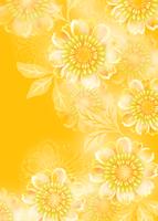 陽気な向日葵