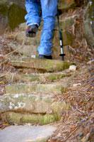 Man walking on footpath in forest 11010006527| 写真素材・ストックフォト・画像・イラスト素材|アマナイメージズ