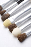A row of brushes