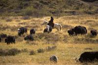 Ruoergai Grassland