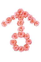Pink roses in shape of male symbol