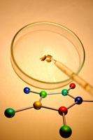 Molecular structure & petri dish
