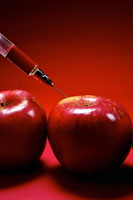 Apple being injected by syringe