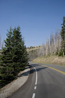 Yellowstone National Park, Empty road