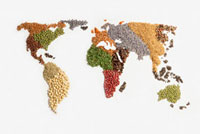 Map of world made of various seeds