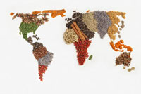 Map of world made of various Spices