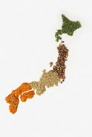 Map of Japan made of various Spices