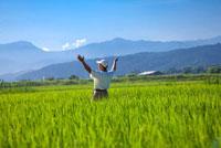 Elderly farmer standing in rice field,deep breathing