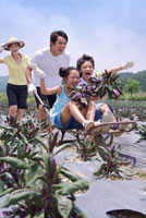 Young family playing with push cart in the vegetable garden