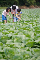 Young man with two children looking down together in the veg