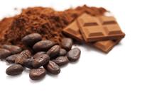 Chocolate, Cocoa Bean, Cocoa Powder