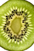 Kiwi - Fruit, Fruit,