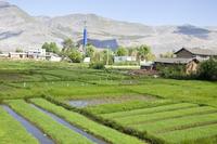 Yunnan Province, China, Asia,