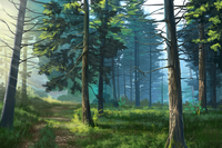 Forest,