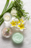 Aromatherapy Oil, Vanilla, Frangipani, Rosemary, Aloe, Candl