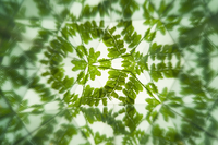 Kaleidoscope, Abstract, 11010049801| 写真素材・ストックフォト・画像・イラスト素材|アマナイメージズ