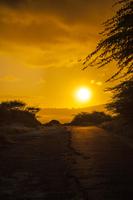 Hawaii, USA, Oceania, Oahu, 11010050055| 写真素材・ストックフォト・画像・イラスト素材|アマナイメージズ