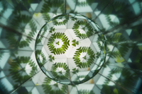 Abstract, Kaleidoscope, 11010050256| 写真素材・ストックフォト・画像・イラスト素材|アマナイメージズ