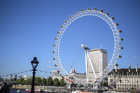 The London Eye, City of London, British, Europe,