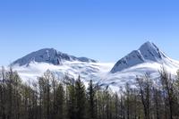 Alaska, USA, America, North America, 11010051519| 写真素材・ストックフォト・画像・イラスト素材|アマナイメージズ