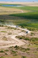 サバンナの道を走る自動車