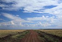 青空と大地の道
