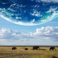 地球とアフリカ象