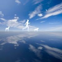 青空と歩く人と犬