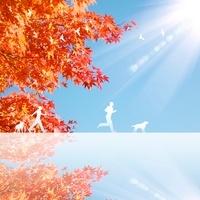 紅葉と人 11011011642| 写真素材・ストックフォト・画像・イラスト素材|アマナイメージズ